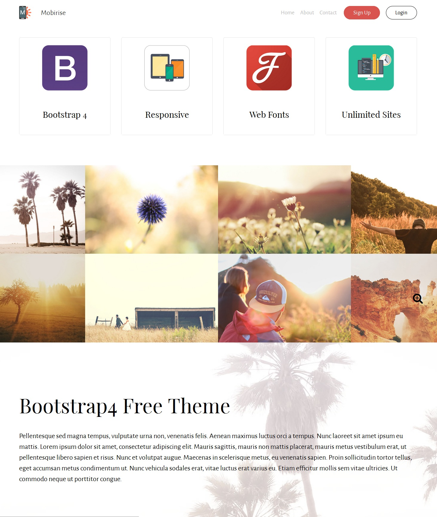 Responsive Bootstrap Real Estate Theme